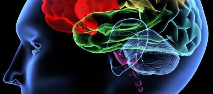 5 Thoughts About What Intelligence Means In An Age Of Specialization