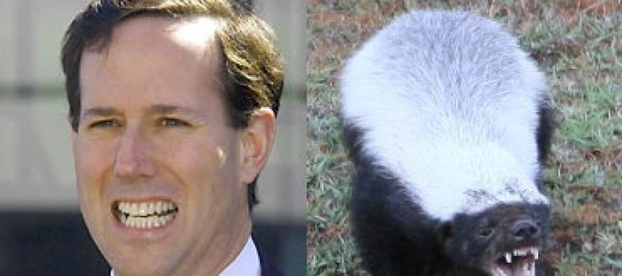 Rick Santorum/Honey Badger 2012! (Pic)