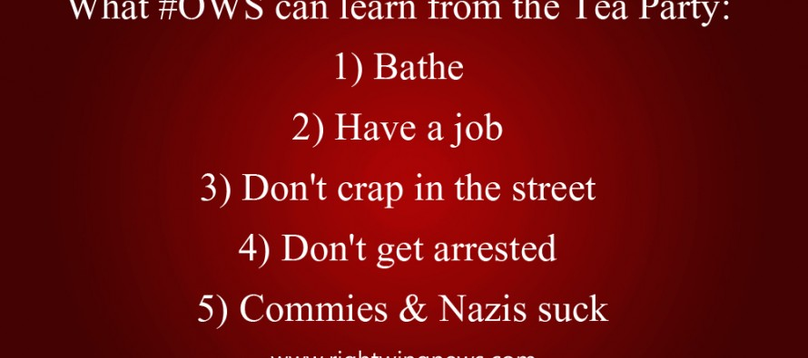 What Occupy Wall Street Can Learn From The Tea Party (Quote/Pic)