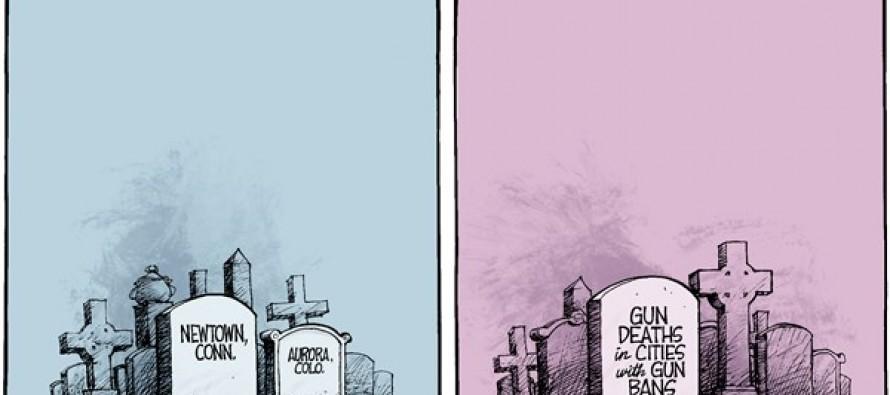 Arguments Over Banning Guns… (Cartoon)