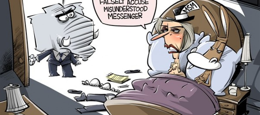Media In Bed With Dems (Cartoon)