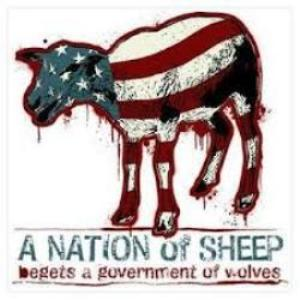 nation of sheep3