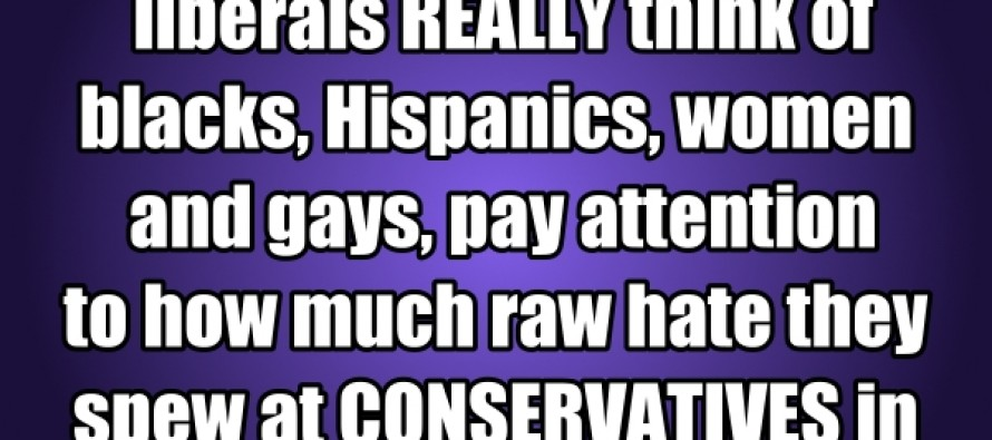 If You Want To Know What Liberals Really Think Of Blacks, Hispanics, Women And Gays…(Picture/Quote)