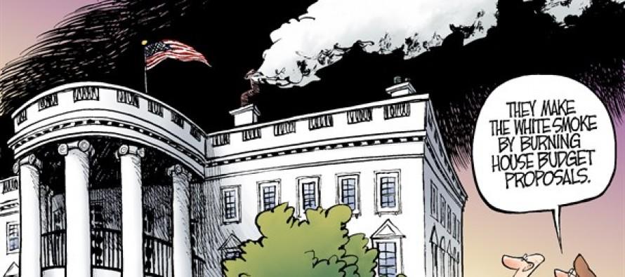 Budget Smoke (Cartoon)