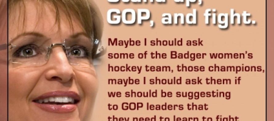 Sarah Palin Prepares To Dominate The 2014 Election Cycle