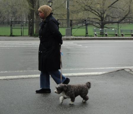 muslim and dog