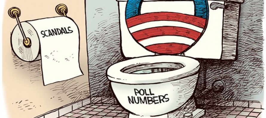 Obama Toilet (Cartoon)