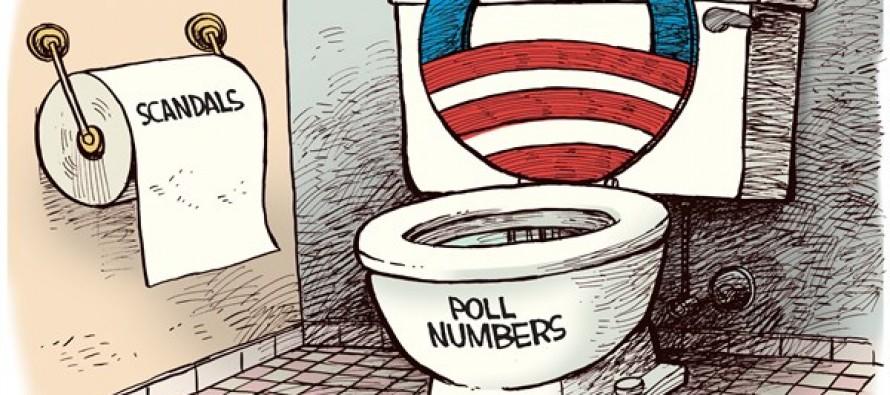Obama Toilet (Cartoon)