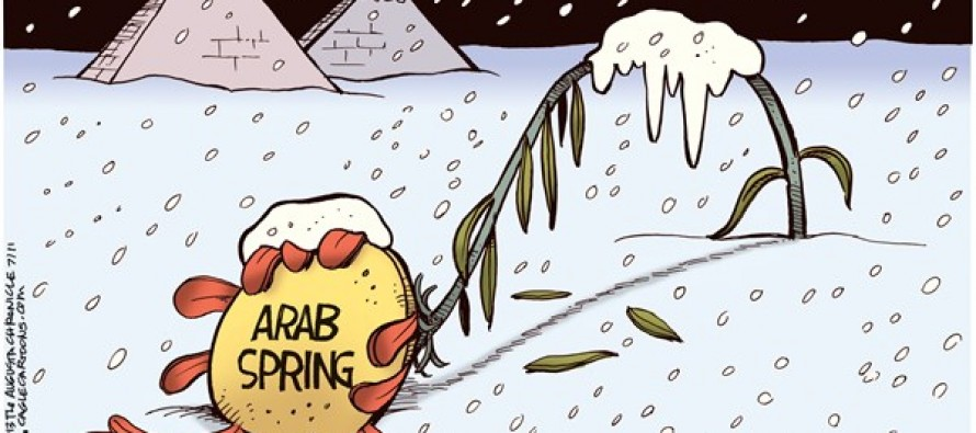 Arab Spring Frozen (Cartoon)
