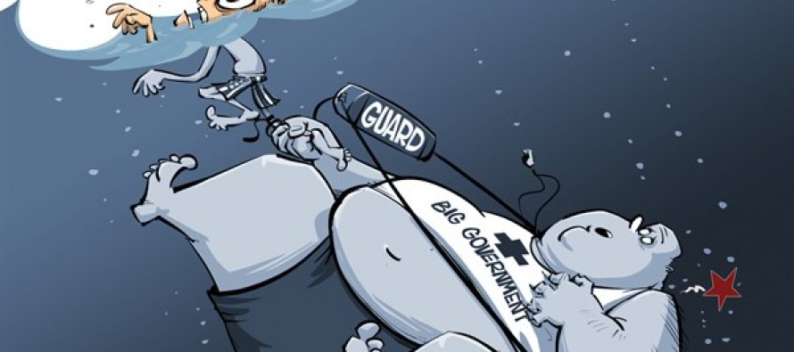 Big Government Life Guard Cartoon)