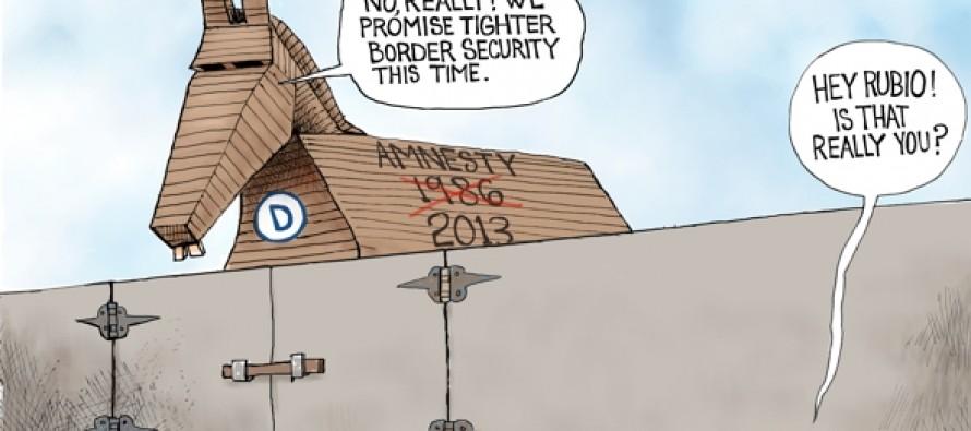 Border Insecurities (Cartoon)