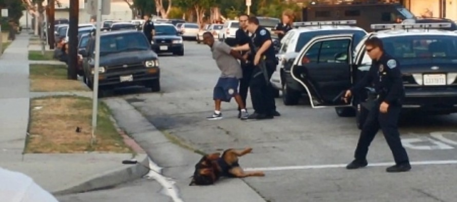Out-of-Control Cops Arrest Man On Flimsy Charges And Shoot His Dog To Death In Front Him