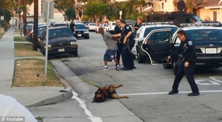 cops murder dog
