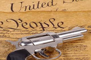 Constitution & Guns