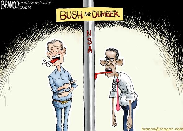 Bush-Dumber-590-LI