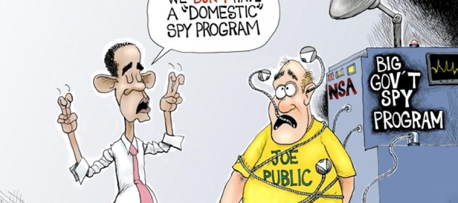 Private Spy (Cartoon)