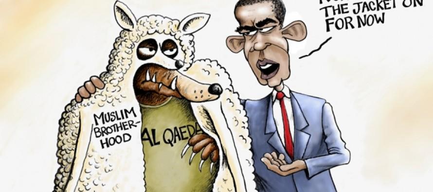 Muslim Brotherhood Sheep's Clothing (Cartoon)