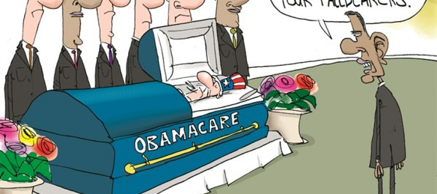 Obamacare Pallbearers (Cartoon)