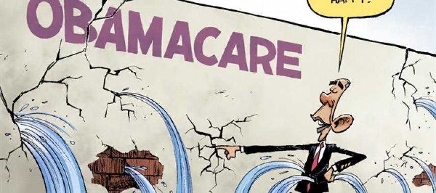 Obamacare Repair (Cartoon)