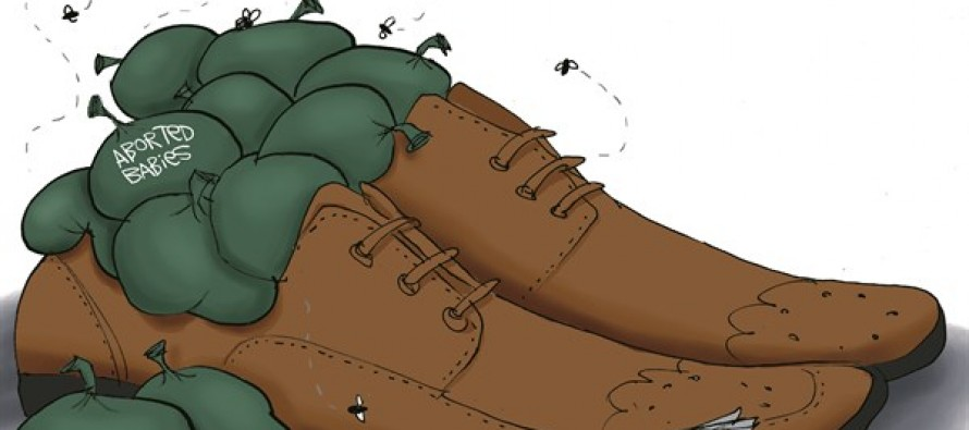Mandela's Shoes (Cartoon)