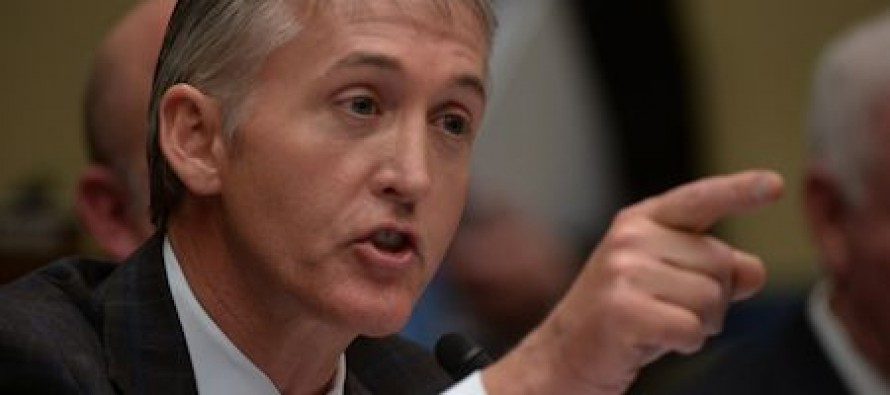 Congressman Trey Gowdy To Liberal Law Professor: If Obama Can Ignore Parts Of Obamacare, Could He Ignore Election Laws Too?