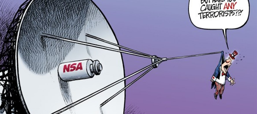Caught by the NSA (Cartoon)