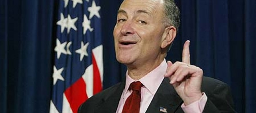 Chuck Schumer Calls For Using IRS To Curtail Tea Party Activities