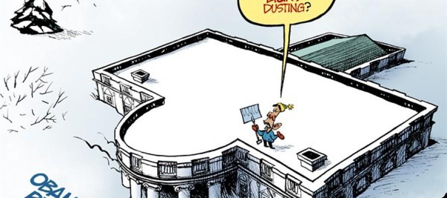 Obamacare Snowstorm (Cartoon)