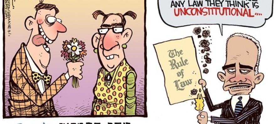 Eye of Eric Holder (Cartoon)