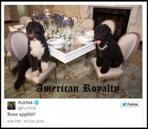 Obama dogs in jewels