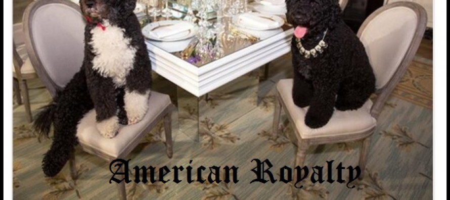 American Royalty: Obama's Dress Their Dogs in Jewels — Michelle Obama's Dinner Dress Costs More Than Annual US Poverty Level