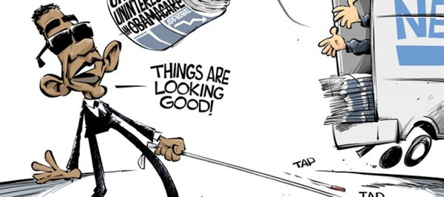 Obama's rose colored glasses (Cartoon)