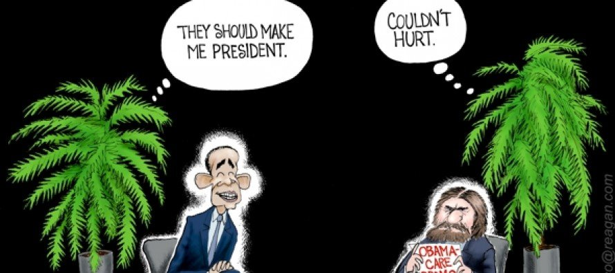 Ferns and Clowns (Cartoon)