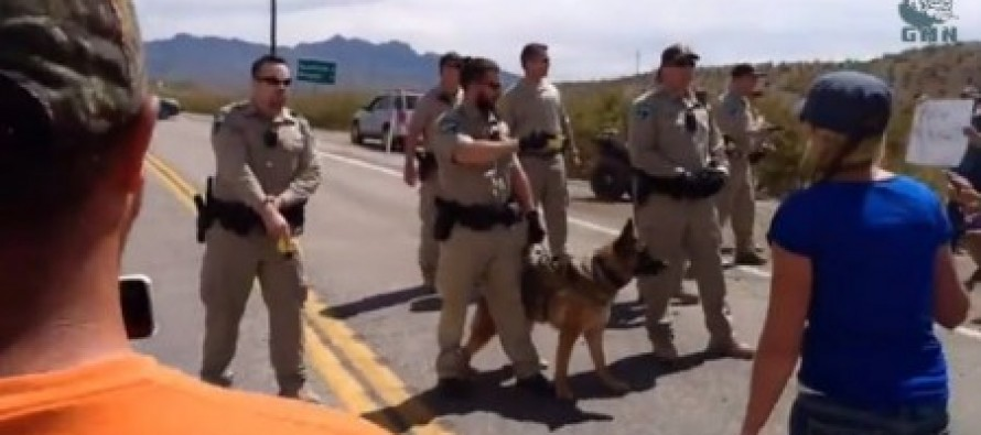 VIDEO of heated Nevada cattle ranch riot! Feds use attack dogs, tasers on protesters