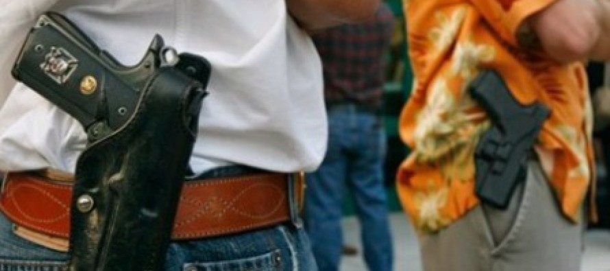 Wisconsin Police Chief Won't Enforce Gun Ban
