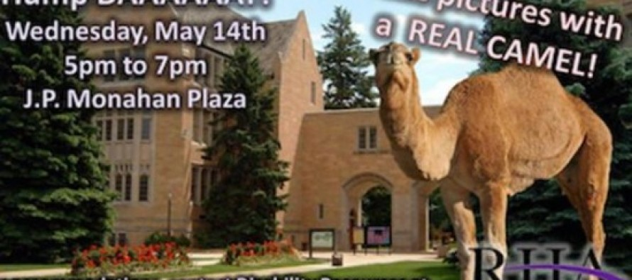 "College Cancels ""Hump Day"" Event With Camel Over Fears That It's Racist"