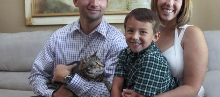 Ninja Cat: Fearless Feline Saves 4-year old Boy From Vicious Dog Attack [Video]