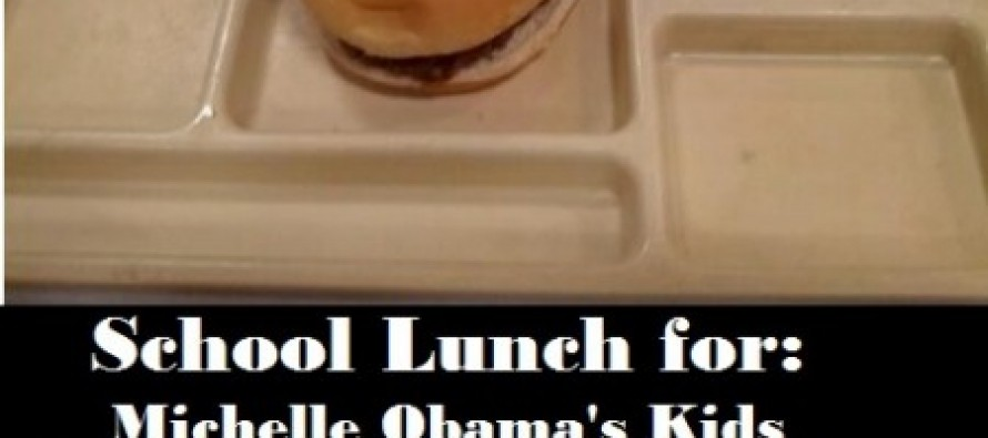 "Michelle Obama's Daughters Get Meatball Subs And Ice Cream For School Lunch While Public School Kids Get Stuck With Her Bland ""Healthy"" Lunches…"