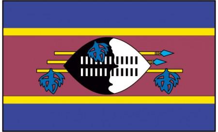 swaziland-flag-229-p