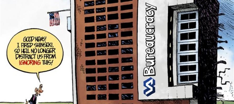 VA Bureaucracy (Cartoon)
