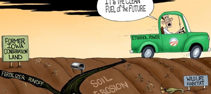 Ethanol Disaster (Cartoon)