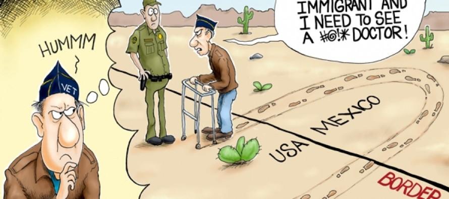 Illegal Veteran (Cartoon)
