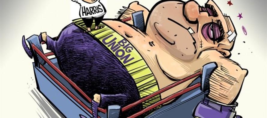 Harris vs Quinn (Cartoon)