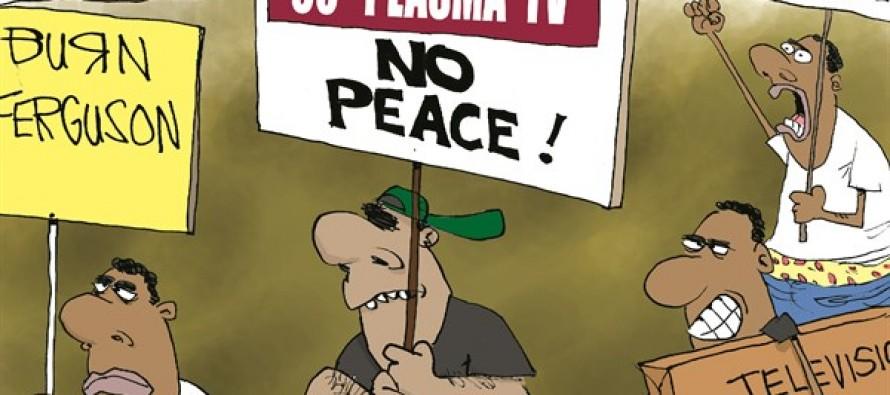 Ferguson Rioting (Cartoon)