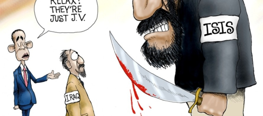 ISIS Amateurs (Cartoon)