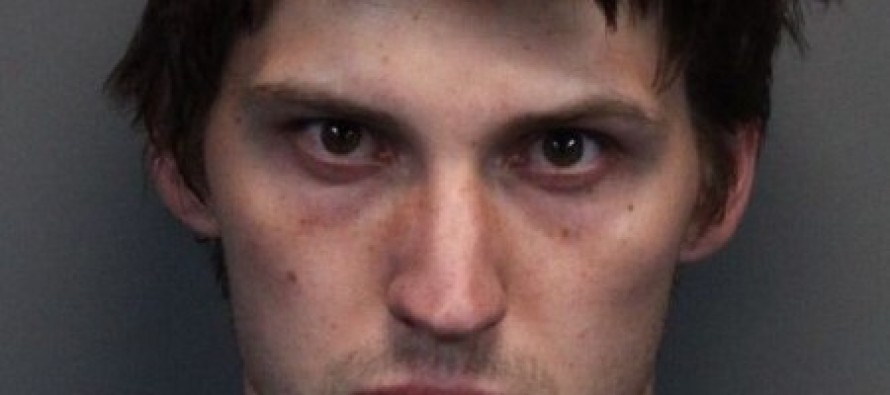 'Dog decapitator', 24, 'butchered his pooches and kept their heads in a motel fridge'