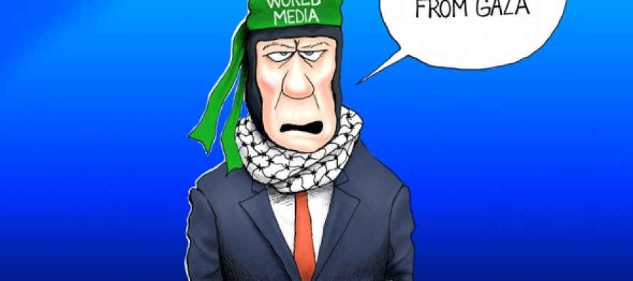 What Media Bias? (Cartoon)