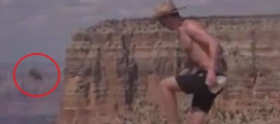 Caught on camera: Sick thug kicks squirrel off Grand Canyon after luring it to the edge with crumbs