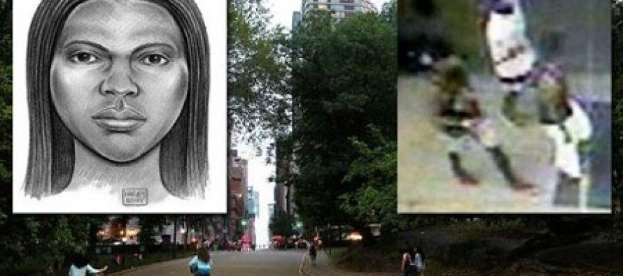 """New York Woman Shot in the Head With Pellet Gun by Blacks Who Yelled """"All White People Suck"""""""