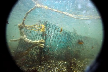 Ghost Lobster Trap